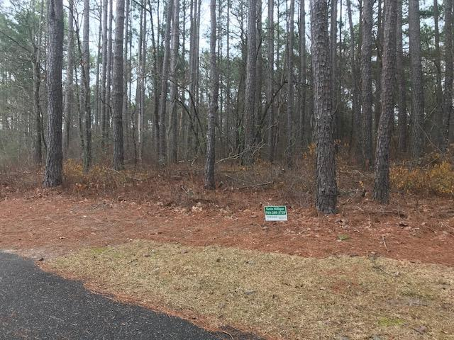 Tbd Rock Ridge Road, Wagram, NC 28396 (MLS #186652) :: Pinnock Real Estate & Relocation Services, Inc.