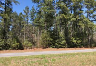 Tbd Us Hwy 1, Pinebluff, NC 28373 (MLS #187105) :: Weichert, Realtors - Town & Country