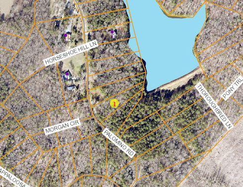 125 Palomino Road, Carthage, NC 28327 (MLS #189144) :: Weichert, Realtors - Town & Country