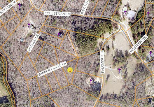 149 Winner Cir Lane, Carthage, NC 28327 (MLS #189145) :: Weichert, Realtors - Town & Country