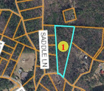 Lot 28 Western Trail, Carthage, NC 28327 (MLS #189362) :: Pinnock Real Estate & Relocation Services, Inc.
