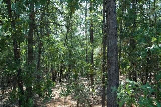 18 Oak Hill Drive, Foxfire, NC 27281 (MLS #189472) :: Weichert, Realtors - Town & Country