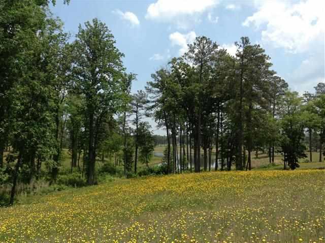 274 NW Pelham Trail Lot 23, Vass, NC 28394 (MLS #193078) :: On Point Realty
