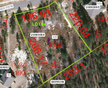 150 Pinelands Court, Jackson Springs, NC 27281 (MLS #193999) :: Pinnock Real Estate & Relocation Services, Inc.