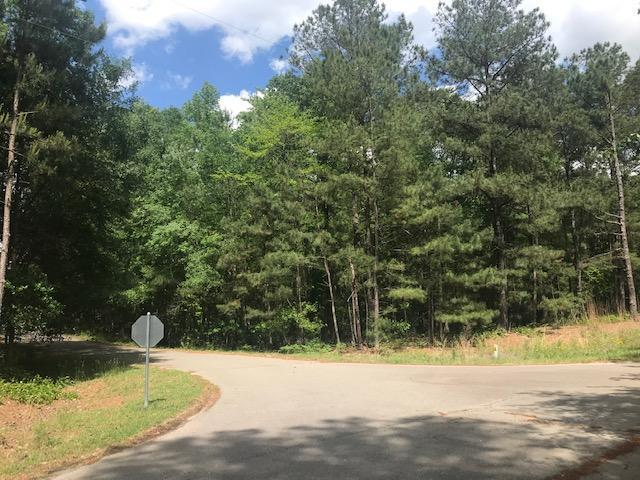 120 Millstone Court, West End, NC 27376 (MLS #194368) :: Pinnock Real Estate & Relocation Services, Inc.