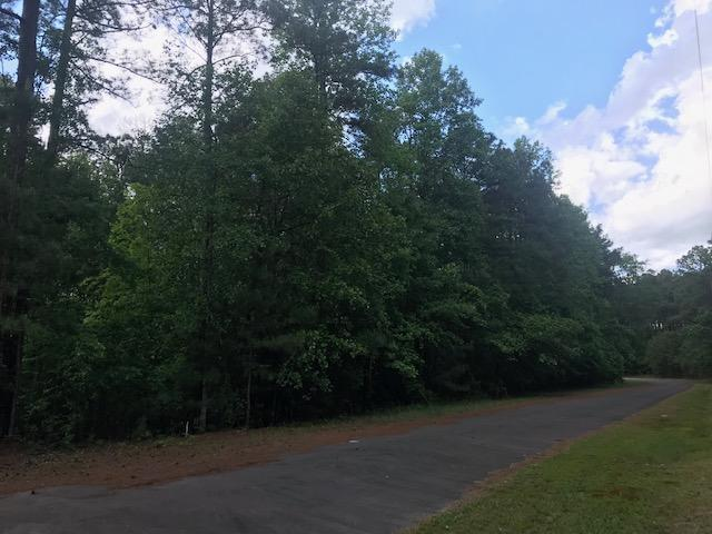 156 Boulder Drive, West End, NC 27376 (MLS #194369) :: Pinnock Real Estate & Relocation Services, Inc.