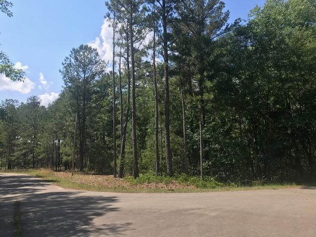 150 Millstone Court, West End, NC 27376 (MLS #194501) :: Pinnock Real Estate & Relocation Services, Inc.