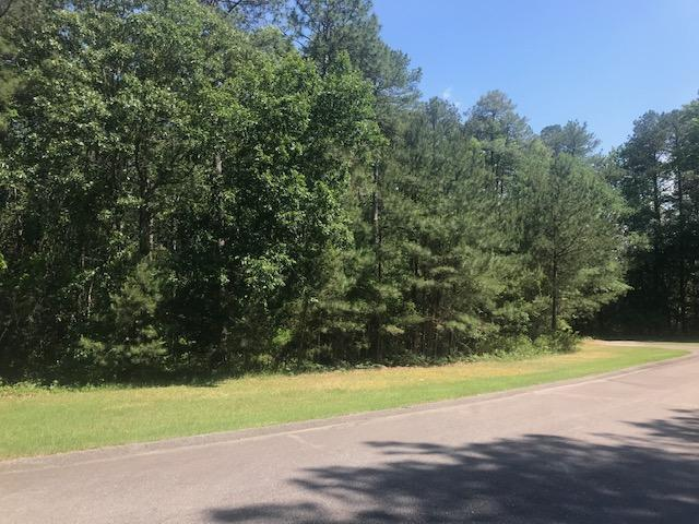 383 Boulder Drive, West End, NC 27376 (MLS #194504) :: Pinnock Real Estate & Relocation Services, Inc.