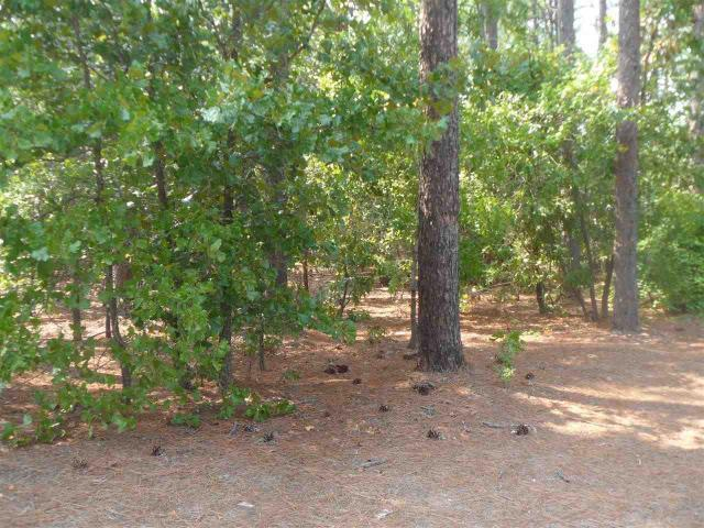 Tbd Summer Creek Trail - Photo 1