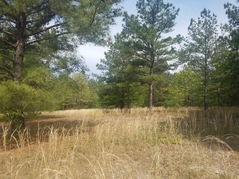 425 Broken Ridge Trail - Photo 1