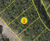 Lot 6 Lakeshore Drive, Wagram, NC 28396 (MLS #198122) :: Pinnock Real Estate & Relocation Services, Inc.