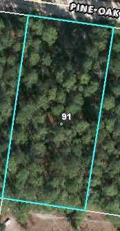 91 Pine Oak - Photo 1