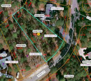 132 Shaw Drive, West End, NC 27376 (MLS #198707) :: Pinnock Real Estate & Relocation Services, Inc.