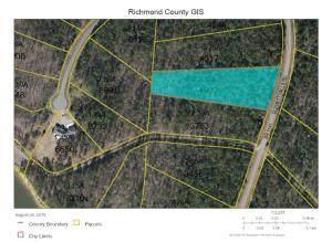 Tbd Blewett Falls Road Lot#5, Rockingham, NC 28379 (MLS #200356) :: Pinnock Real Estate & Relocation Services, Inc.