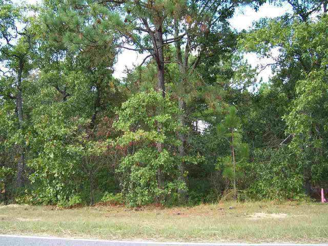 Address Not Published, West End, NC 27376 (MLS #200568) :: Pines Sotheby's International Realty