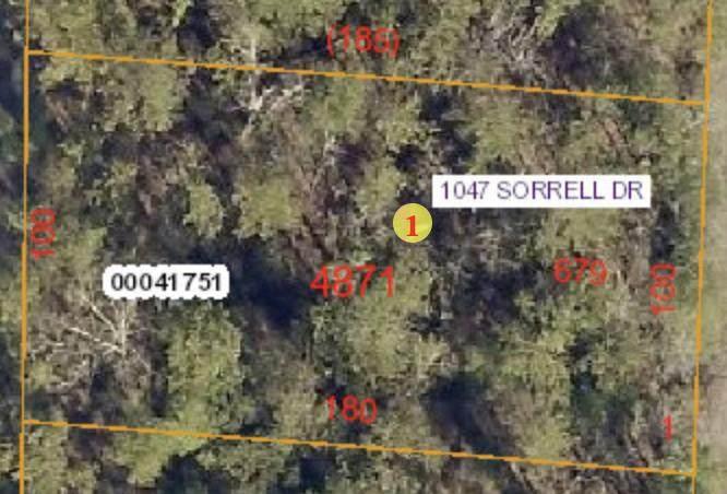 1047 Sorrell Drive - Photo 1