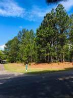 485 Longleaf Drive - Photo 1