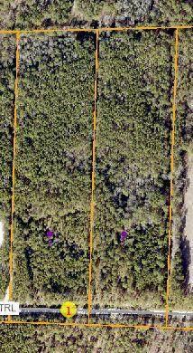 329 Summer Creek Trail, Vass, NC 28394 (MLS #201054) :: Pinnock Real Estate & Relocation Services, Inc.