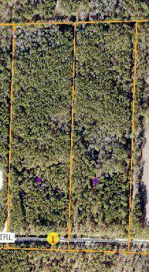 363 Summer Creek Trail, Vass, NC 28394 (MLS #201055) :: Pinnock Real Estate & Relocation Services, Inc.