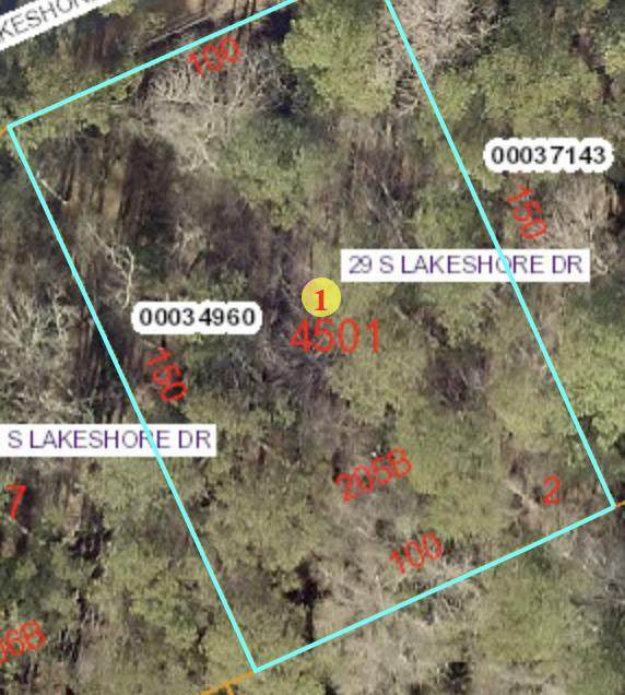 29 S Lakeshore Drive, Whispering Pines, NC 28327 (MLS #201188) :: Pinnock Real Estate & Relocation Services, Inc.