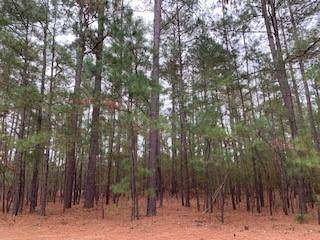 23 Plantation Drive, Southern Pines, NC 28387 (MLS #201615) :: Pinnock Real Estate & Relocation Services, Inc.