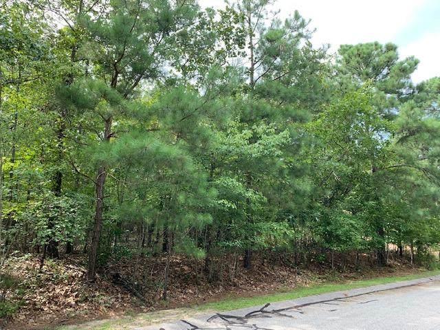 138 Wertz Drive, West End, NC 27376 (MLS #202095) :: Pinnock Real Estate & Relocation Services, Inc.