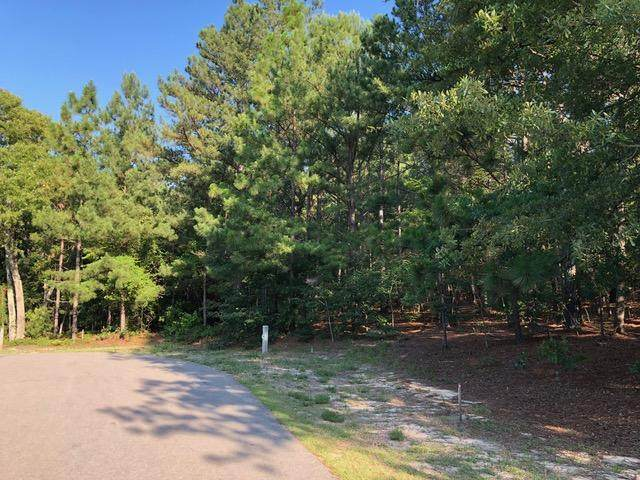 190 Brookline Drive, Pinehurst, NC 28374 (MLS #202445) :: On Point Realty