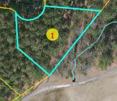 28 Forest Fern Court, Wagram, NC 28396 (MLS #202804) :: Pinnock Real Estate & Relocation Services, Inc.