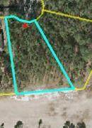 15 Beetree Lane, Wagram, NC 28396 (MLS #202963) :: Pinnock Real Estate & Relocation Services, Inc.