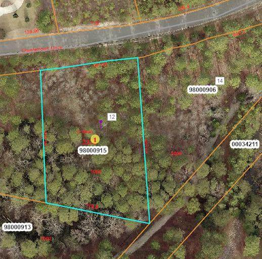 12 Chestertown Drive, Pinehurst, NC 28374 (MLS #203036) :: Pinnock Real Estate & Relocation Services, Inc.