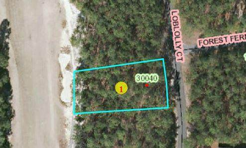 44 Loblolly Court, Wagram, NC 28396 (MLS #203176) :: Pinnock Real Estate & Relocation Services, Inc.