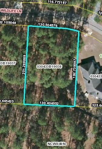 Lot 38 Wildlife Lane, Wagram, NC 28396 (MLS #203275) :: Pinnock Real Estate & Relocation Services, Inc.