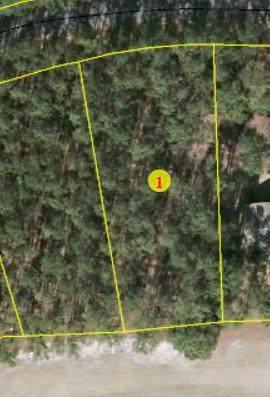 6 Fox Lane, Wagram, NC 28396 (MLS #203982) :: Pinnock Real Estate & Relocation Services, Inc.