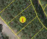 Lot 6 Lakeshore Drive, Wagram, NC 28396 (MLS #203984) :: Pinnock Real Estate & Relocation Services, Inc.