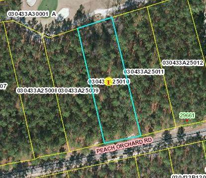 Lot 10 Peach Orchard Road, Wagram, NC 28396 (MLS #204292) :: Pinnock Real Estate & Relocation Services, Inc.