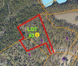 550 Grande Pines Vista Vista, Jackson Springs, NC 27281 (MLS #204662) :: Pinnock Real Estate & Relocation Services, Inc.