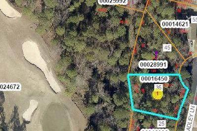 35 Bradley Lane, Pinehurst, NC 28374 (MLS #204893) :: Towering Pines Real Estate