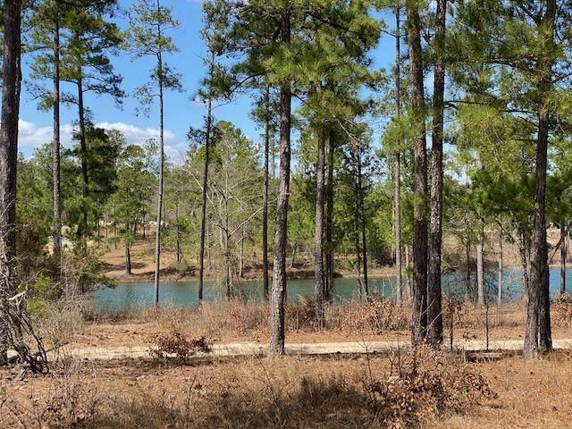 155 Kenric Point, Rockingham, NC 28379 (MLS #205165) :: Towering Pines Real Estate