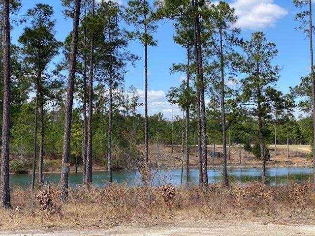 163 Kenric Point, Rockingham, NC 28379 (MLS #205169) :: Towering Pines Real Estate