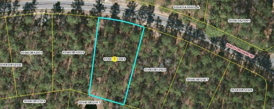 Lot 29 Peach Orchard Road - Photo 1