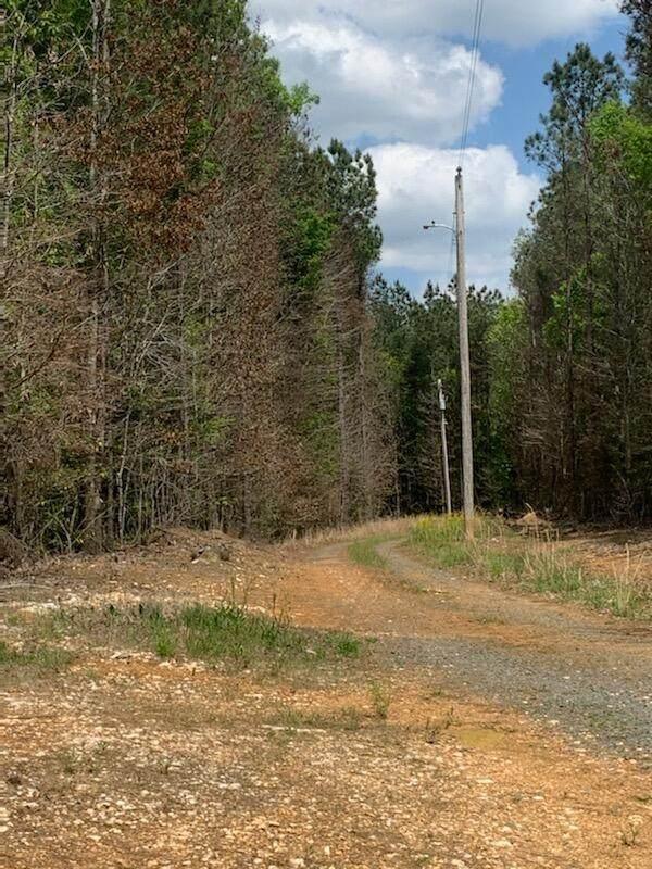 Tbd Greene Rd, Ellerbe, NC 28338 (MLS #205729) :: Pines Sotheby's International Realty