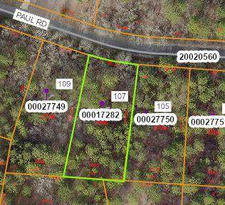 107 Paul Road, West End, NC 27376 (MLS #205791) :: Pinnock Real Estate & Relocation Services, Inc.