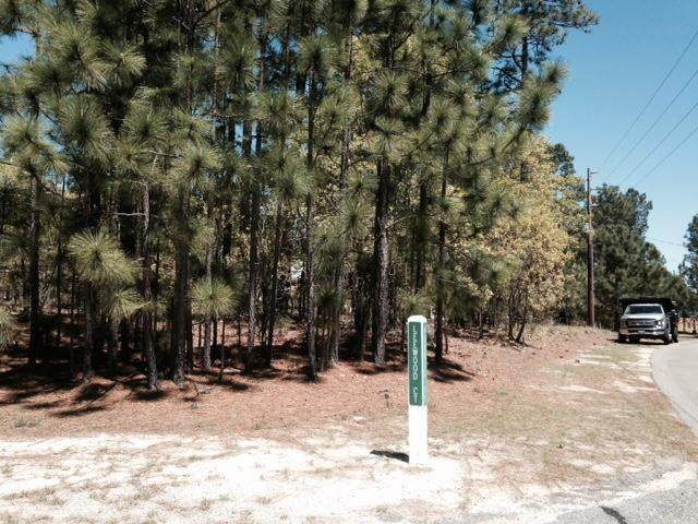 158 Morris Drive, West End, NC 27376 (MLS #205851) :: Towering Pines Real Estate