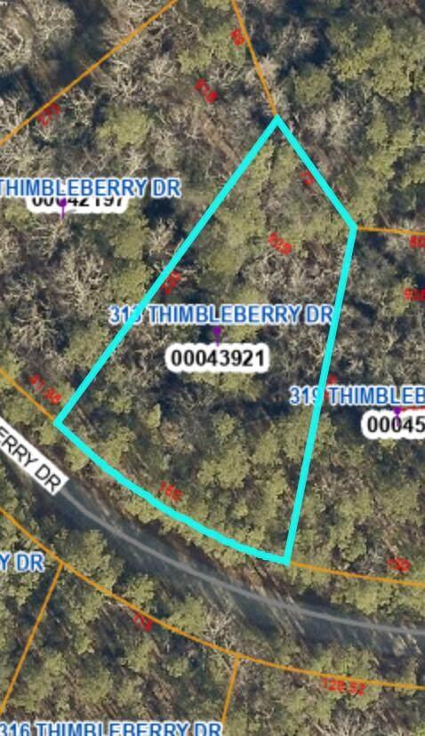 313 Thimbleberry Drive - Photo 1