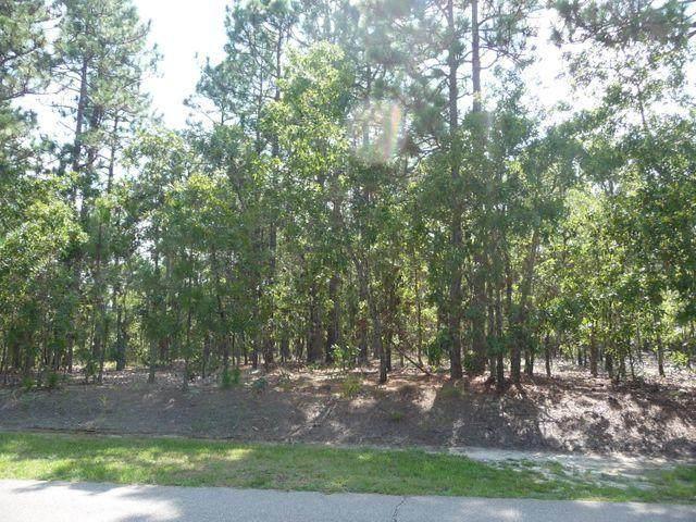 855 Lake Dornoch Drive, Pinehurst, NC 28374 (MLS #206397) :: Pinnock Real Estate & Relocation Services, Inc.