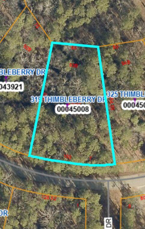 319 Thimbleberry Drive, Vass, NC 28394 (MLS #206577) :: EXIT Realty Preferred