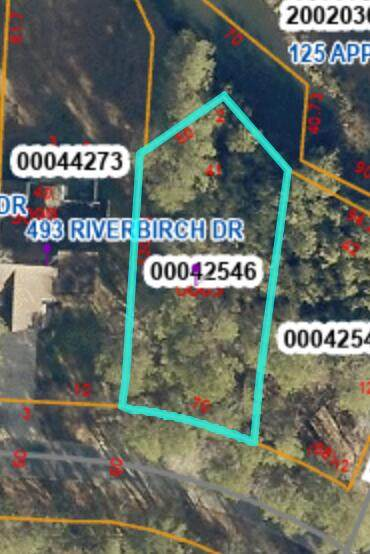 497 Riverbirch Drive, Vass, NC 28394 (MLS #206579) :: EXIT Realty Preferred