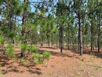 Tbd Foxfire Road #1, Jackson Springs, NC 27281 (MLS #207187) :: Towering Pines Real Estate