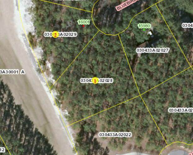 Tbd Blue Bird Lane, Wagram, NC 28396 (MLS #208211) :: Pinnock Real Estate & Relocation Services, Inc.