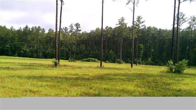 Lot 35 Hwy 24/27, Carthage, NC 28327 (MLS #154625) :: Weichert, Realtors - Town & Country